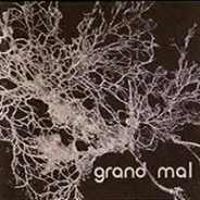 Grand Mal :: barely auditable 1234/Pax recordings (2003)