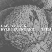 Olivia Block & Kyle Bruckmann: Teem :: either/OAR4 (2010)