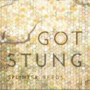 Splinter Reeds: Got Stung (2015)
